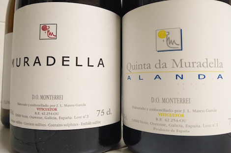 Quinta da Muradella: the quiet search for wine purity