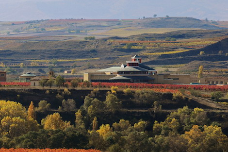 The Rioja library safeguarding the world's wine knowledge