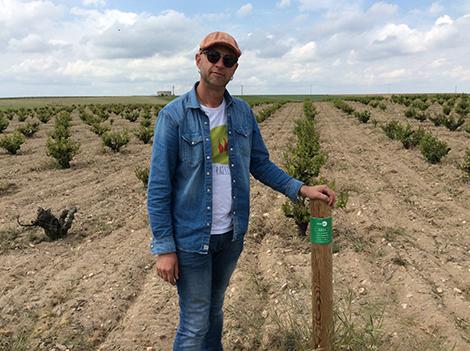 Ismael Gozalo: natural wines and prephylloxera Verdejo | Spanish ...