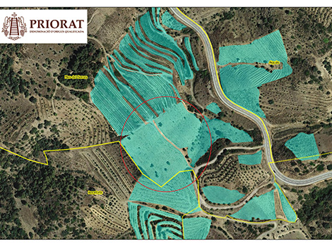 A guide to Priorat's new vineyard classification
