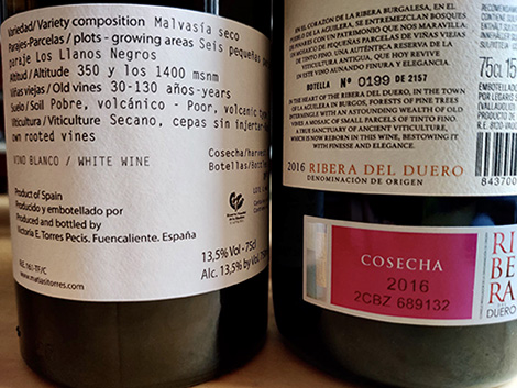 Advanced glossary of wine terms in English and Spanish