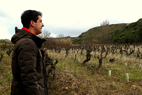 A new generation of brave producers in Rioja (I)