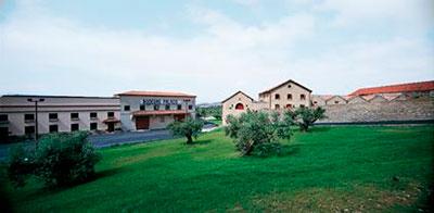 Bodegas Palacio Winery Rioja Spansih Wine Lover