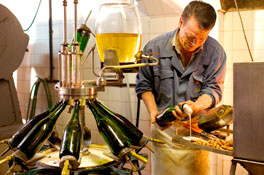 Gramona, a leading Cava producer